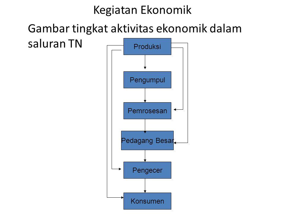 Gambar tingkat aktivitas ekonomik dalam saluran TN