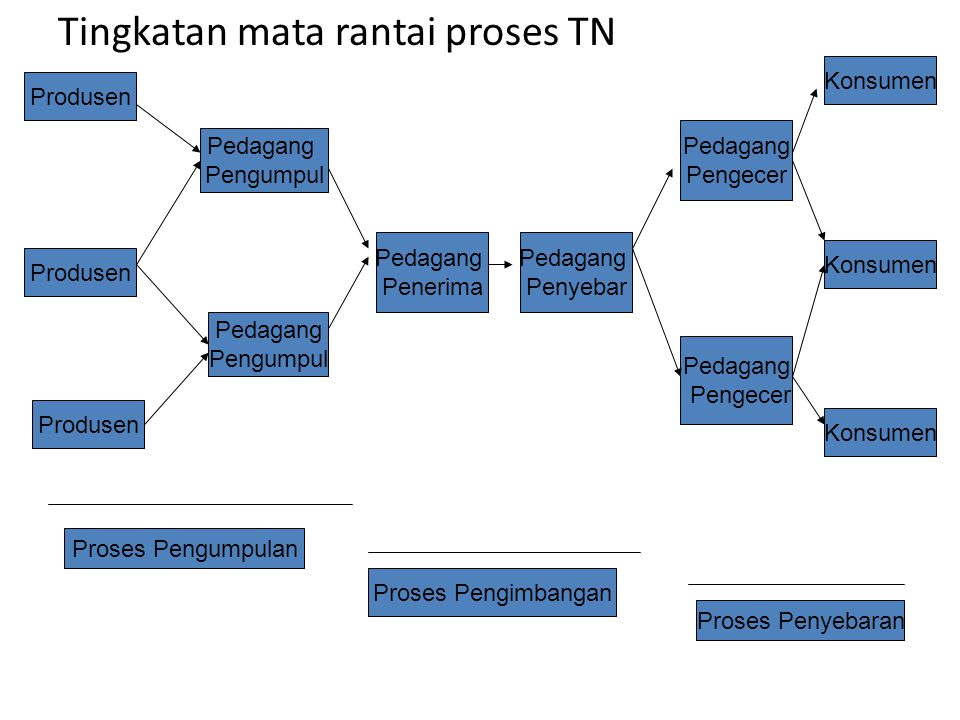 Tingkatan mata rantai proses TN
