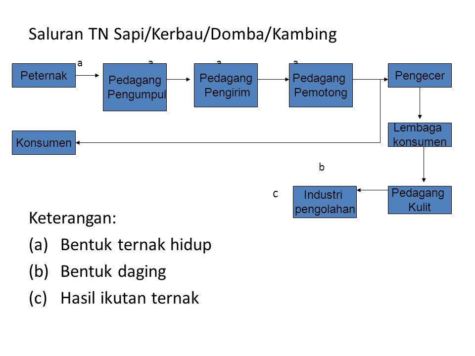 Saluran TN Sapi/Kerbau/Domba/Kambing a a a a