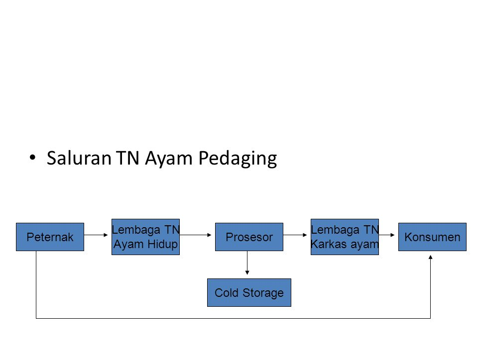 Saluran TN Ayam Pedaging