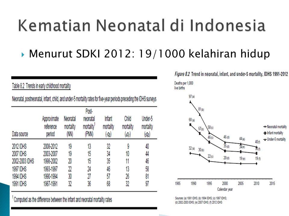 Kematian Neonatal di Indonesia