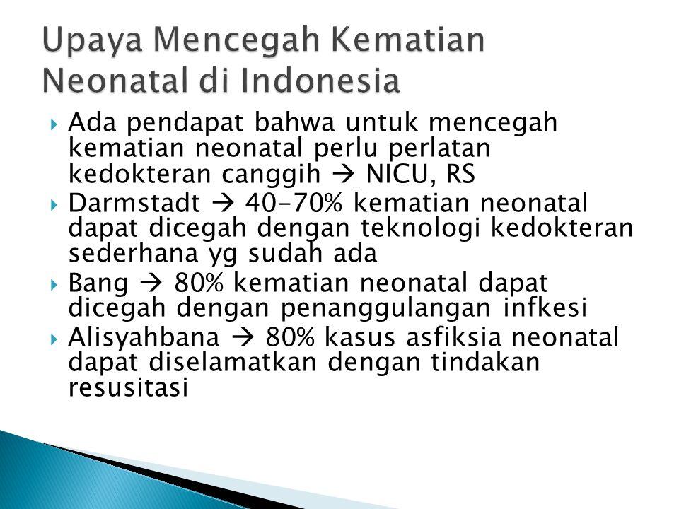 Upaya Mencegah Kematian Neonatal di Indonesia