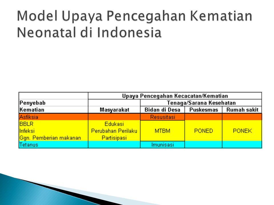 Model Upaya Pencegahan Kematian Neonatal di Indonesia