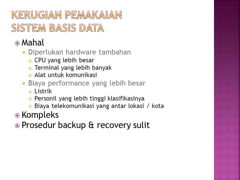 Kerugian Pemakaian Sistem Basis Data
