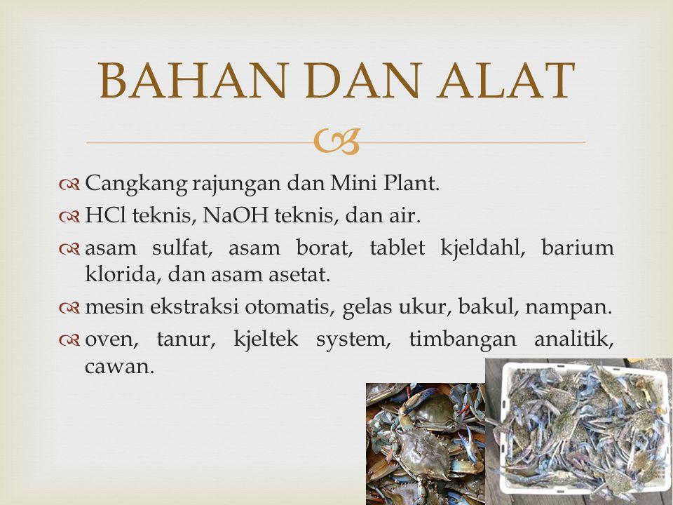 BAHAN DAN ALAT Cangkang rajungan dan Mini Plant.