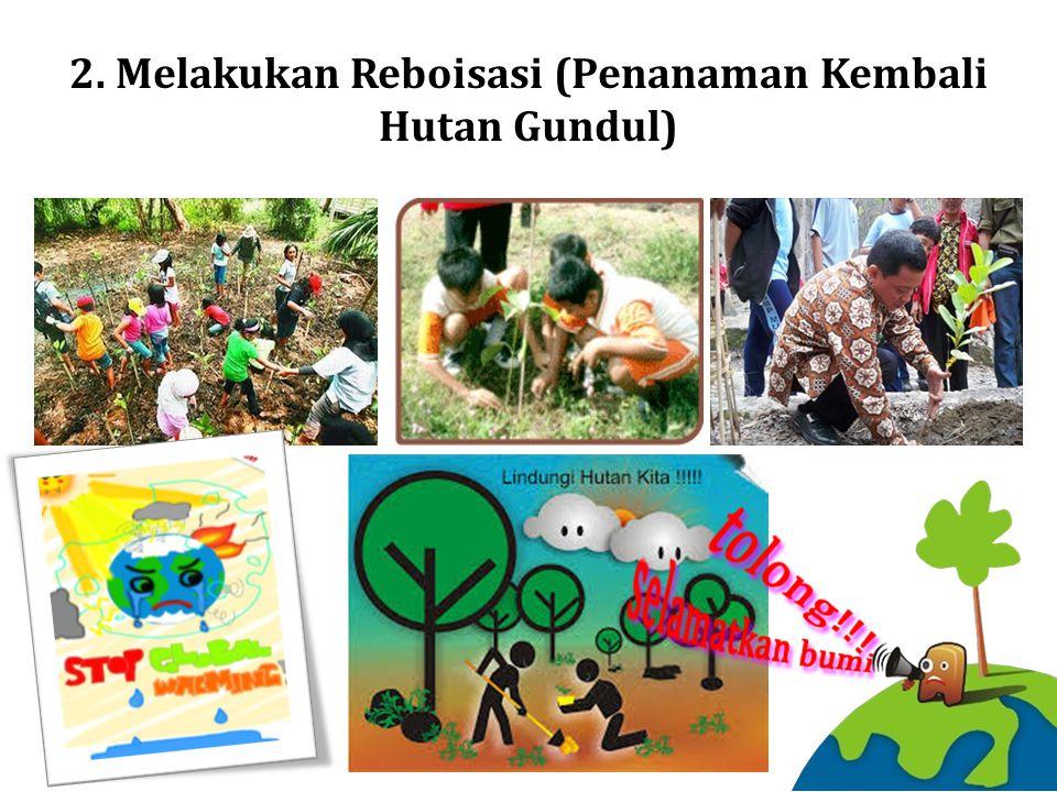 2. Melakukan Reboisasi (Penanaman Kembali Hutan Gundul)