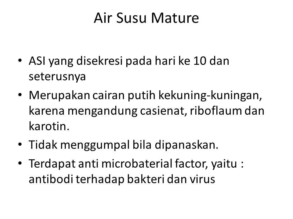 Air Susu Mature ASI yang disekresi pada hari ke 10 dan seterusnya
