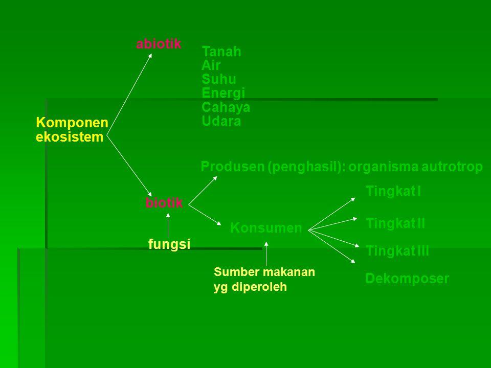 Produsen (penghasil): organisma autrotrop