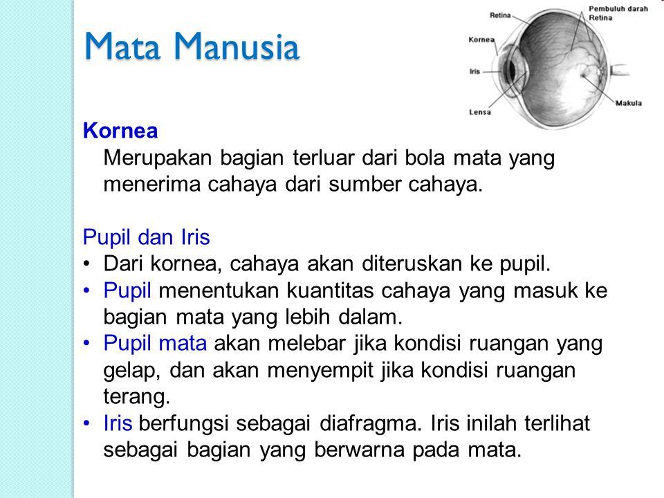 Mata Manusia Kornea Merupakan bagian terluar dari bola mata yang menerima cahaya dari sumber cahaya.