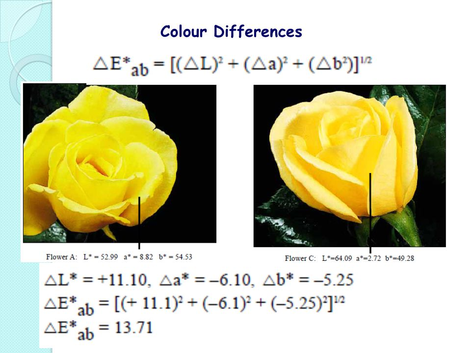 Colour Differences