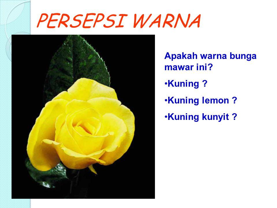 PERSEPSI WARNA Apakah warna bunga mawar ini Kuning Kuning lemon