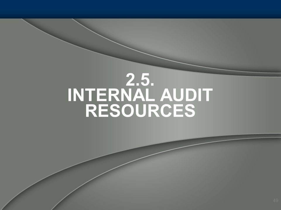 2.5. Internal Audit Resources