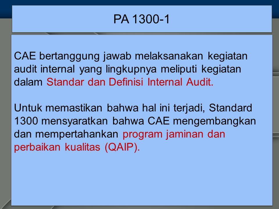 PA 1300-1 CAE bertanggung jawab melaksanakan kegiatan audit internal yang lingkupnya meliputi kegiatan dalam Standar dan Definisi Internal Audit.