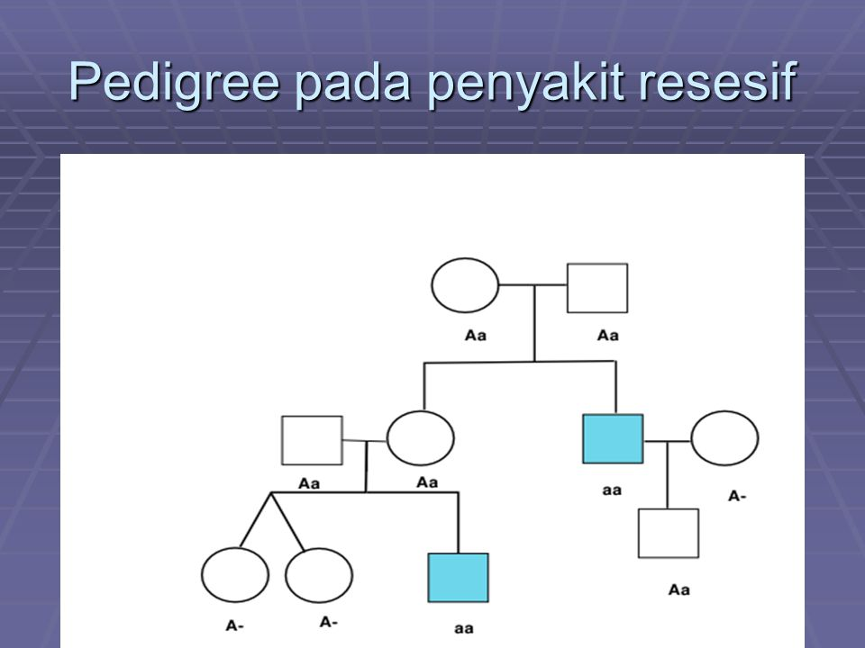 Pedigree pada penyakit resesif