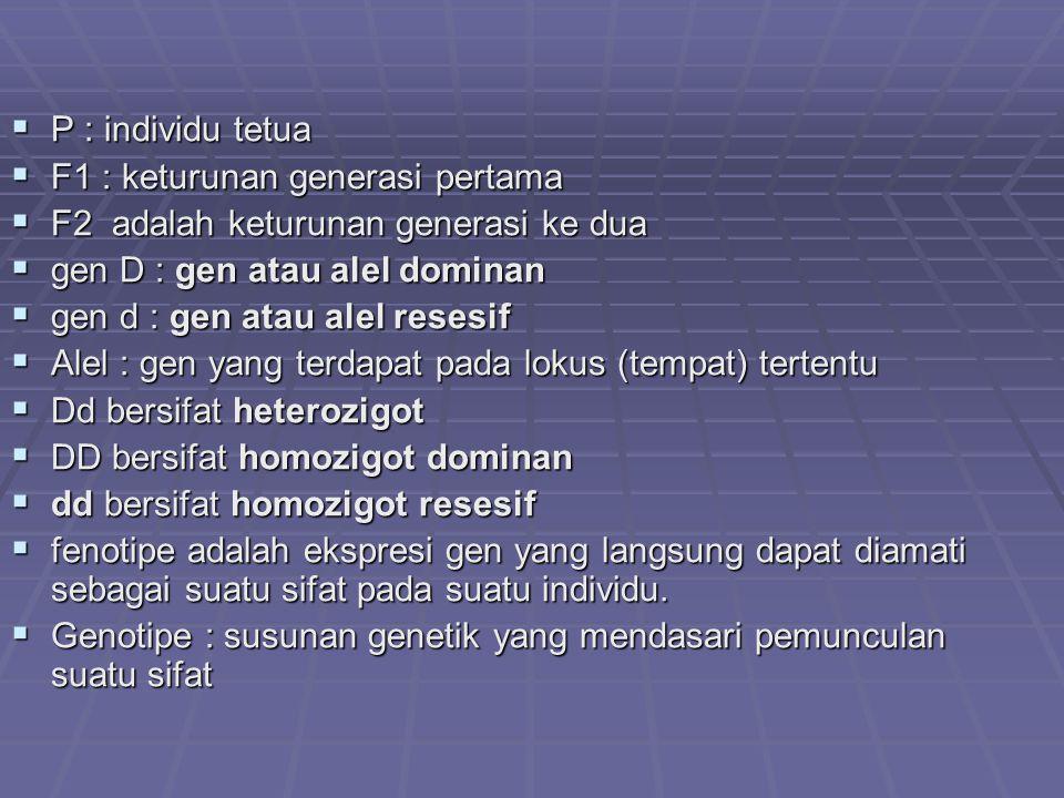 P : individu tetua F1 : keturunan generasi pertama. F2 adalah keturunan generasi ke dua. gen D : gen atau alel dominan.