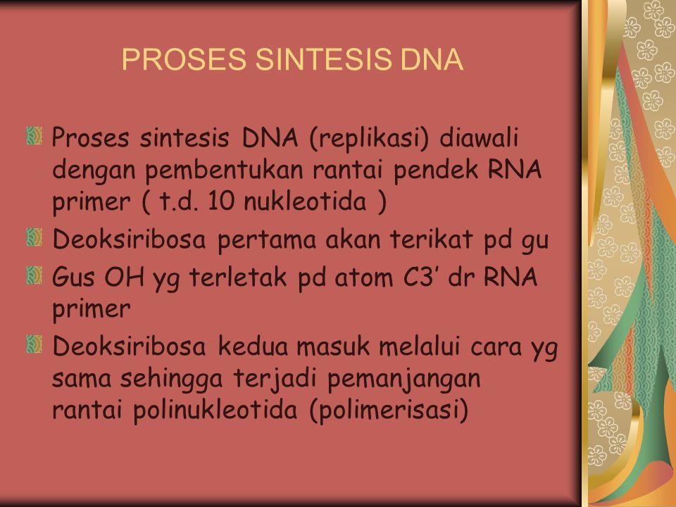 PROSES SINTESIS DNA Proses sintesis DNA (replikasi) diawali dengan pembentukan rantai pendek RNA primer ( t.d. 10 nukleotida )