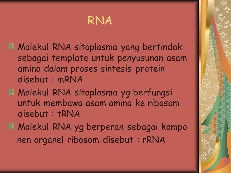 RNA Molekul RNA sitoplasma yang bertindak sebagai template untuk penyusunan asam amino dalam proses sintesis protein disebut : mRNA.
