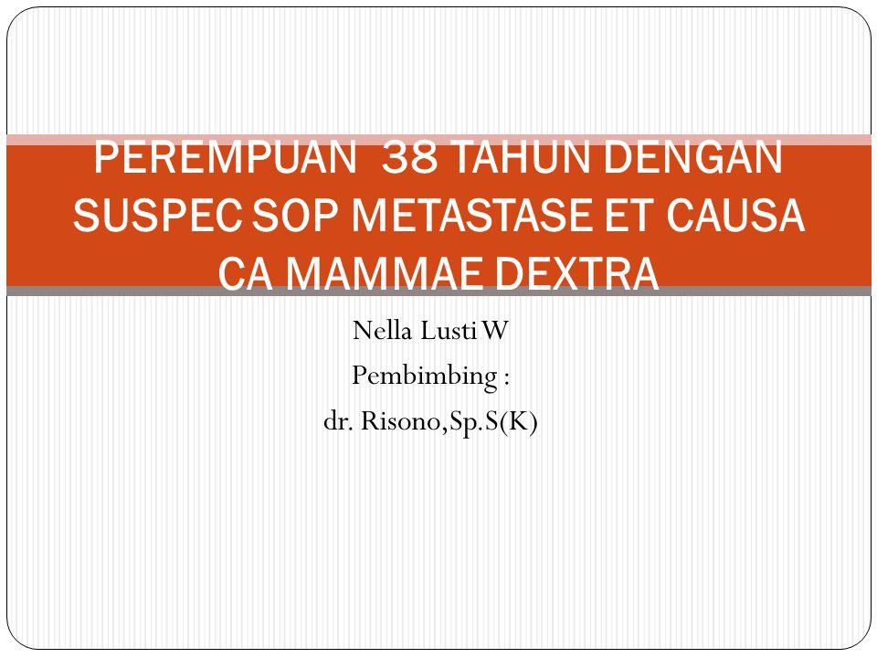 Nella Lusti W Pembimbing : dr. Risono,Sp.S(K)
