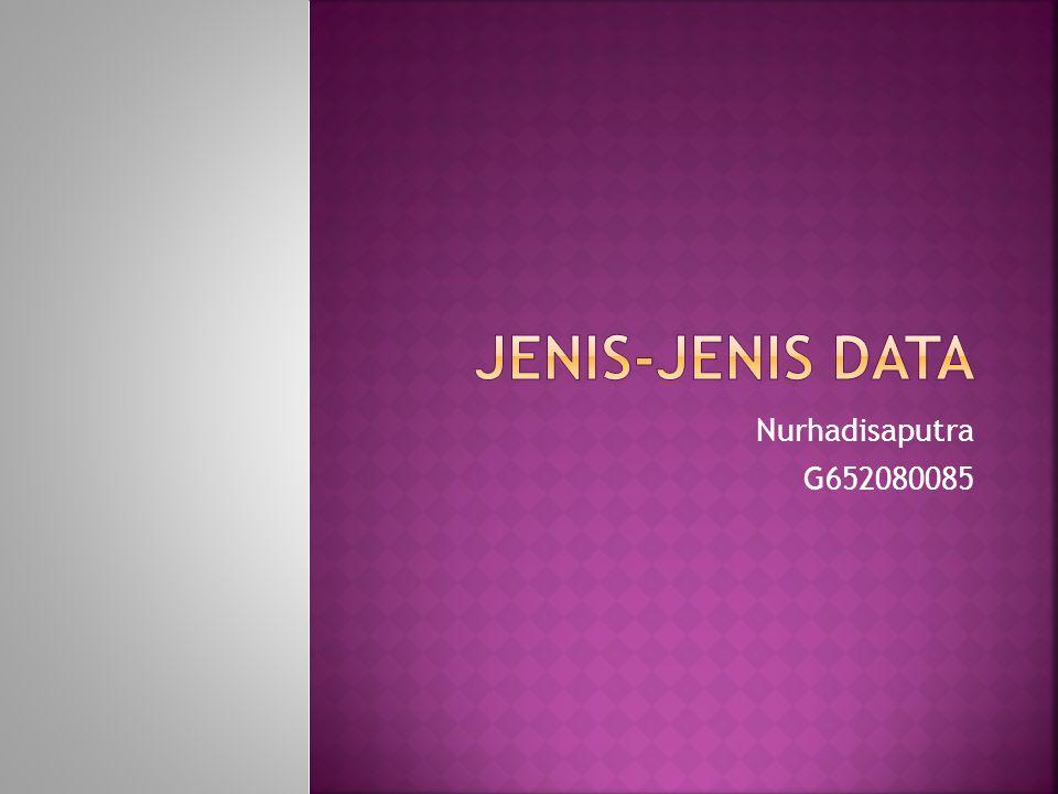JENIS-JENIS DATA Nurhadisaputra G652080085