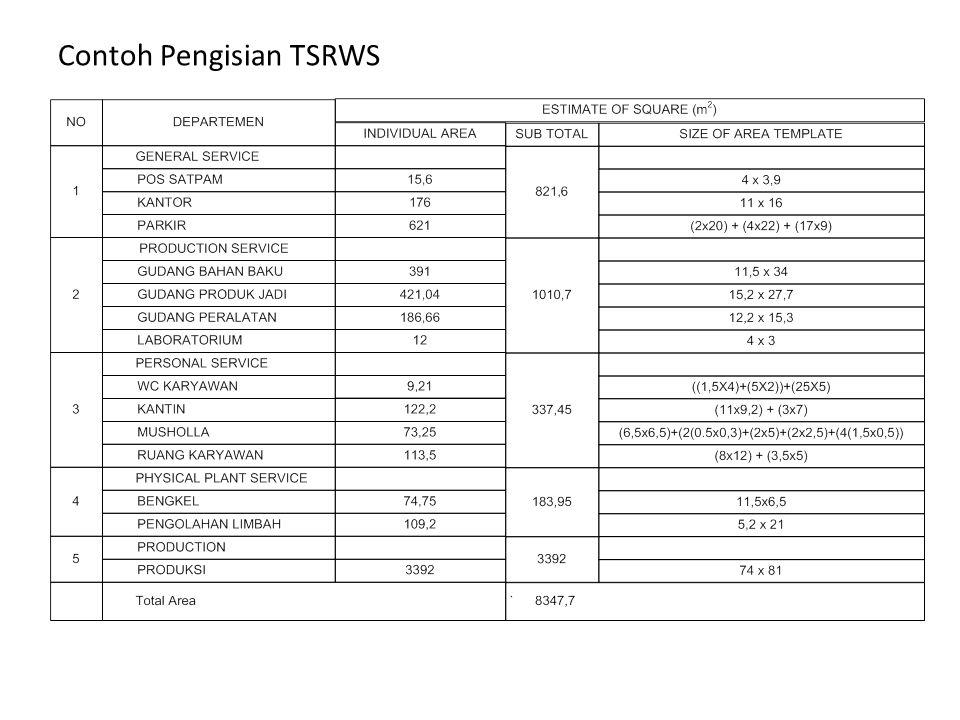 Contoh Pengisian TSRWS