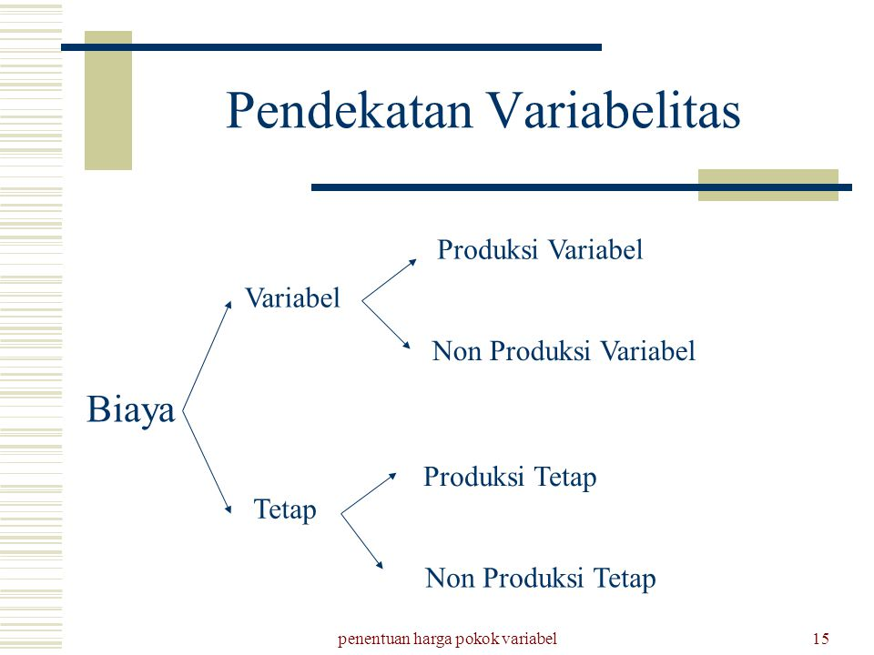 Pendekatan Variabelitas