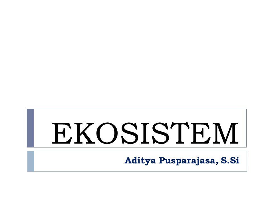 Aditya Pusparajasa, S.Si