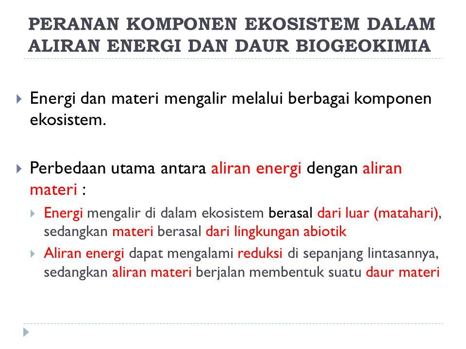 PERANAN KOMPONEN EKOSISTEM DALAM ALIRAN ENERGI DAN DAUR BIOGEOKIMIA