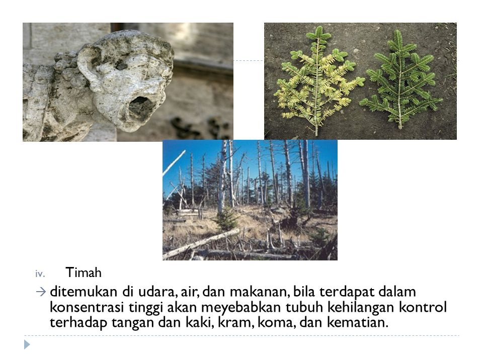 Timah