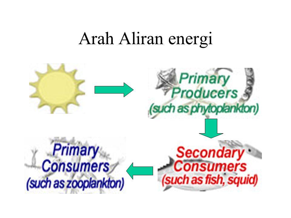 Arah Aliran energi