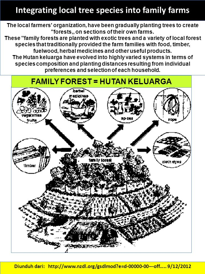 Integrating local tree species into family farms