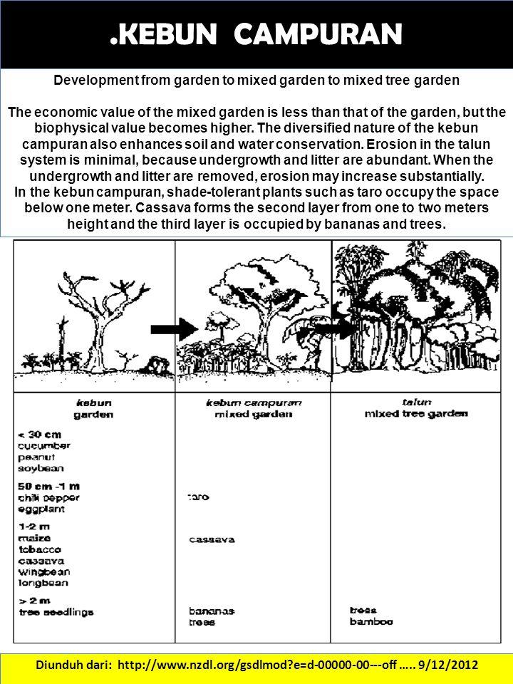 Development from garden to mixed garden to mixed tree garden