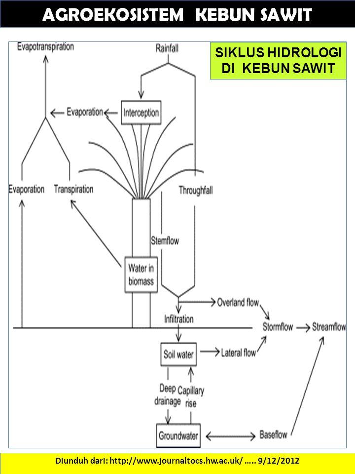 AGROEKOSISTEM KEBUN SAWIT