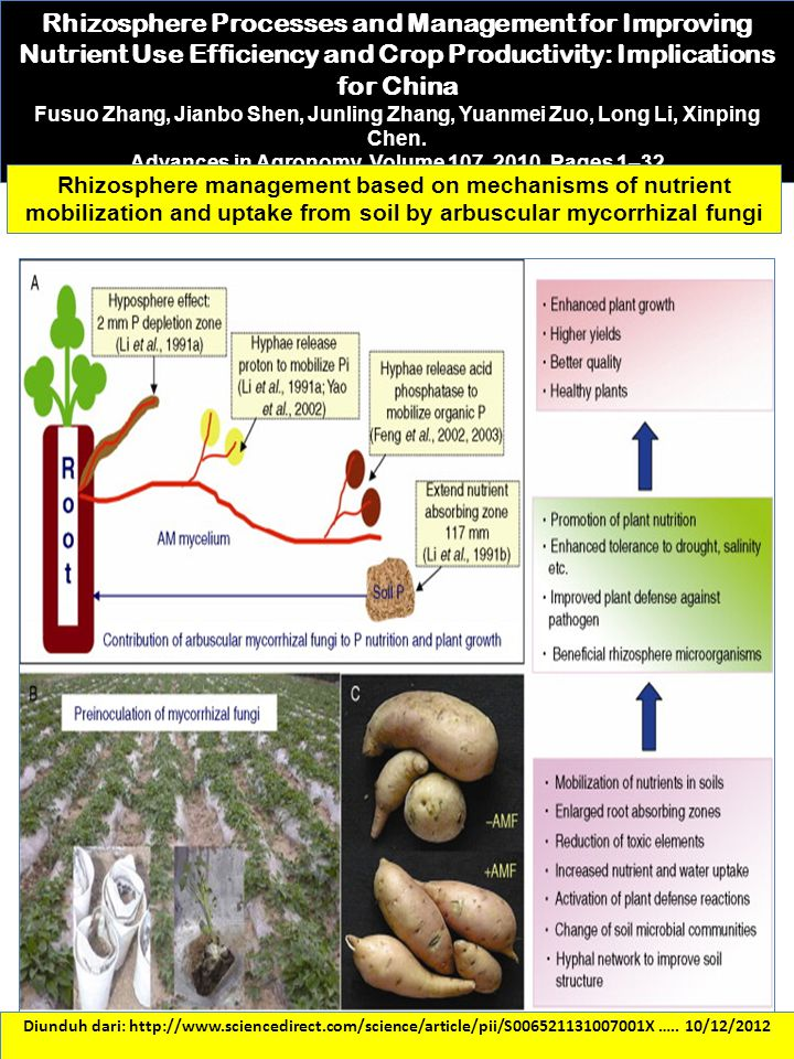 Advances in Agronomy. Volume 107, 2010, Pages 1–32