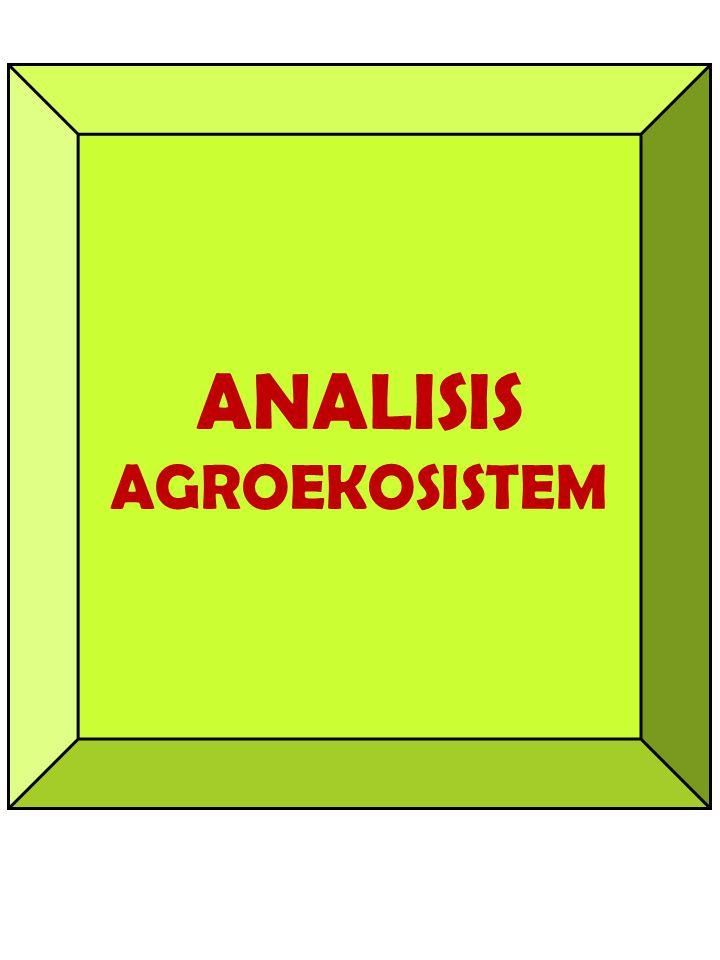 ANALISIS AGROEKOSISTEM