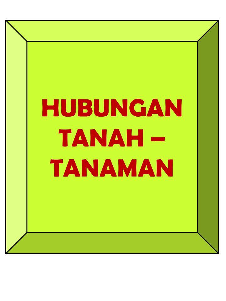 HUBUNGAN TANAH – TANAMAN