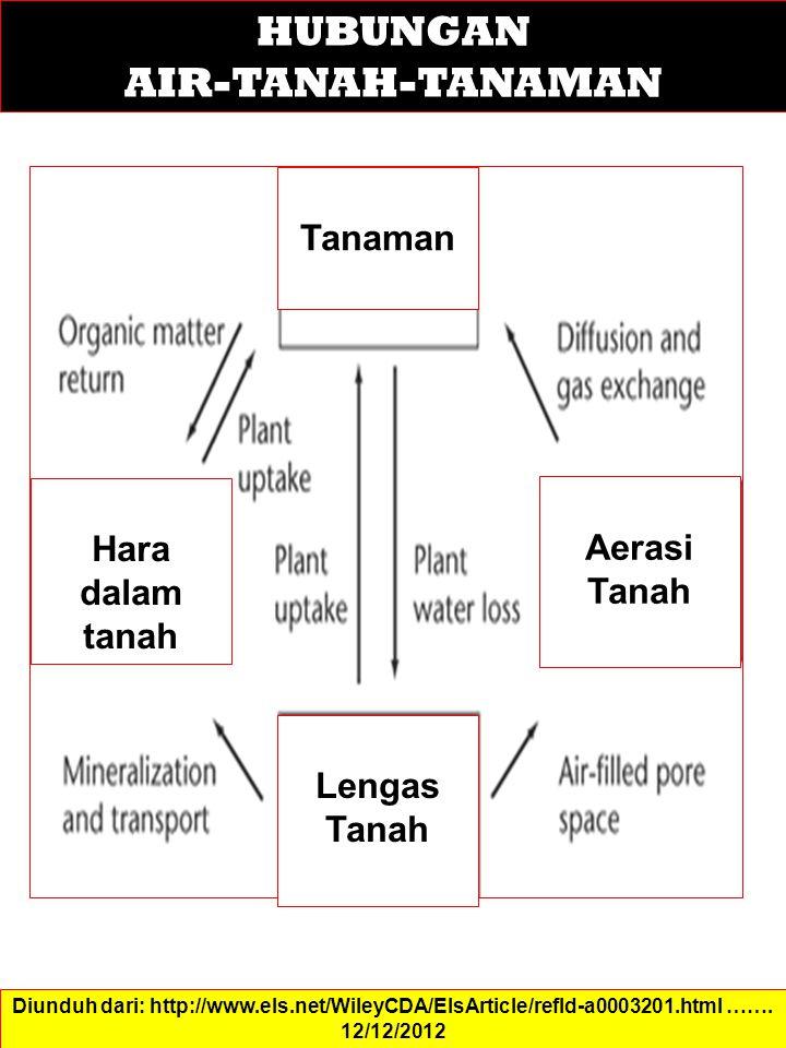 HUBUNGAN AIR-TANAH-TANAMAN Tanaman Hara dalam tanah Aerasi Tanah