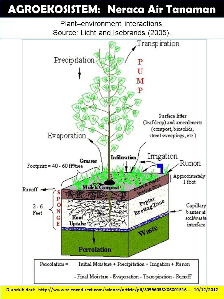 AGROEKOSISTEM: Neraca Air Tanaman