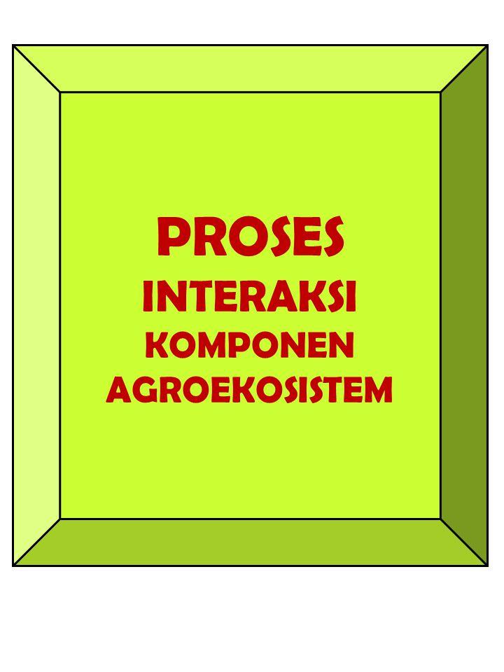 PROSES INTERAKSI KOMPONEN AGROEKOSISTEM
