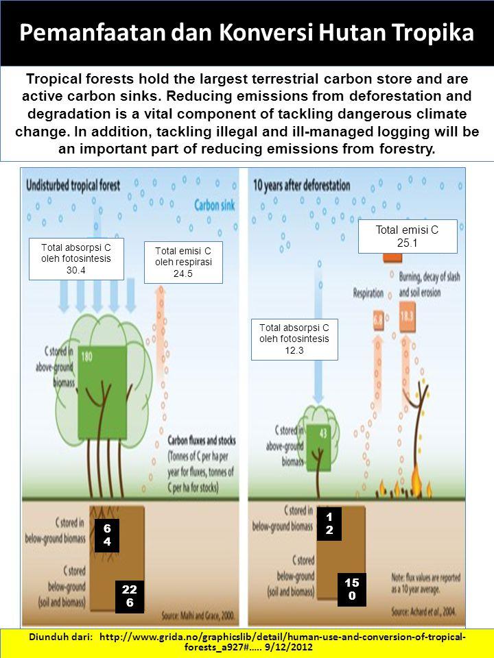 Pemanfaatan dan Konversi Hutan Tropika