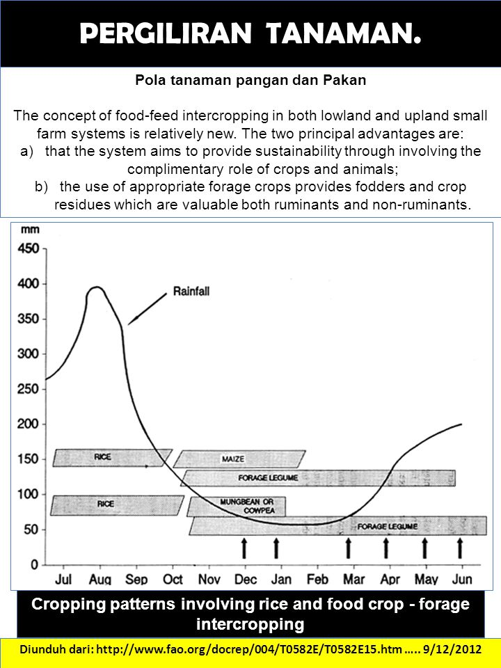 Cropping patterns involving rice and food crop - forage intercropping