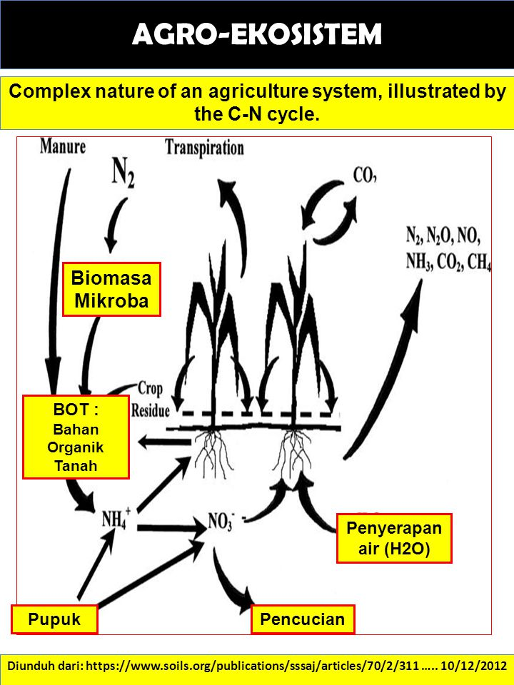 AGRO-EKOSISTEM Complex nature of an agriculture system, illustrated by the C-N cycle. Biomasa Mikroba.