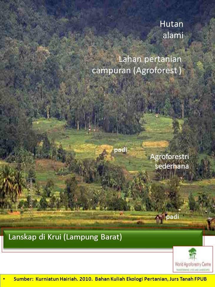 Lahan pertanian campuran (Agroforest )