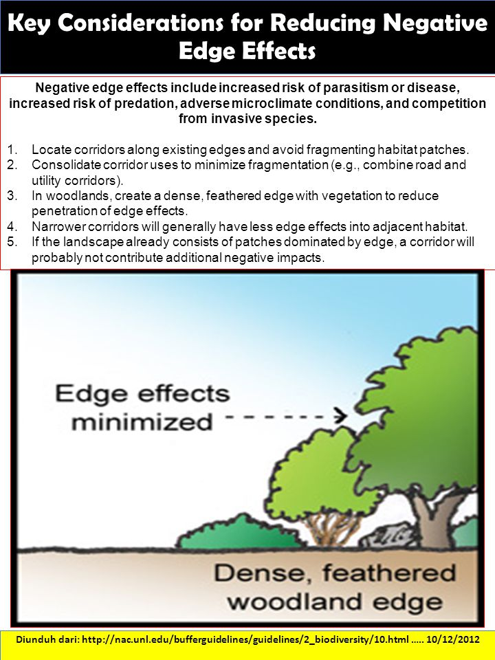 Key Considerations for Reducing Negative Edge Effects