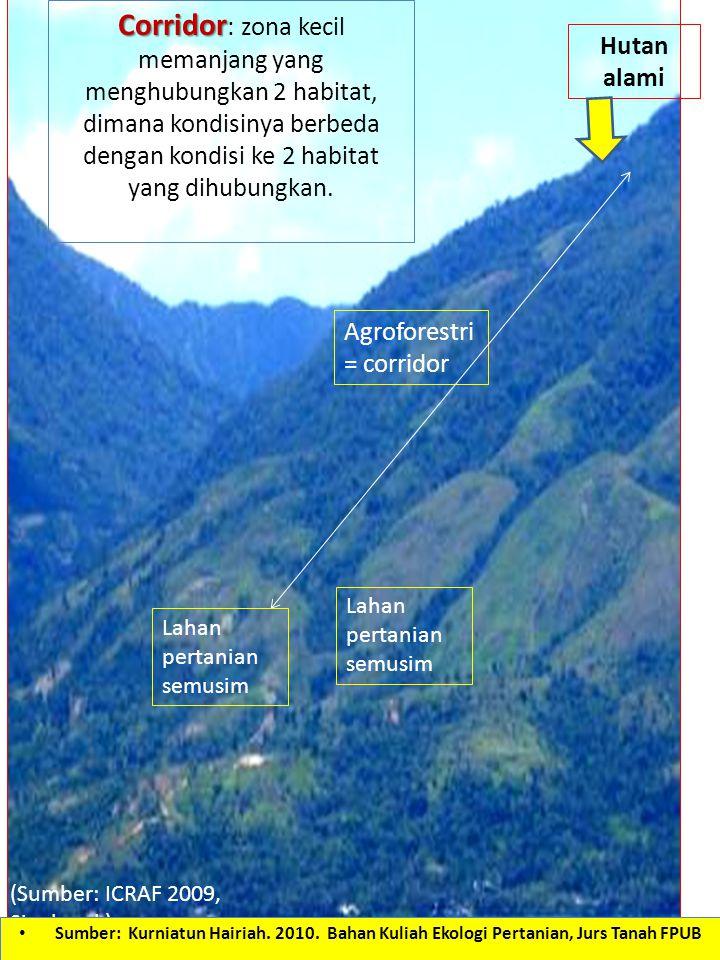 Corridor: zona kecil memanjang yang menghubungkan 2 habitat, dimana kondisinya berbeda dengan kondisi ke 2 habitat yang dihubungkan.