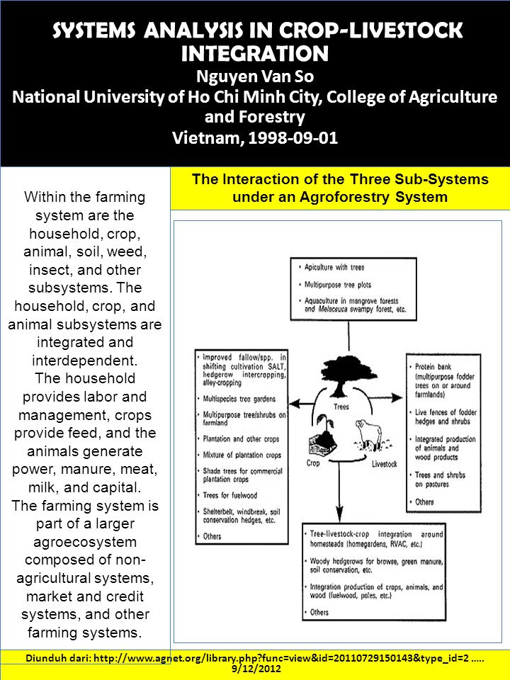 The Interaction of the Three Sub-Systems under an Agroforestry System