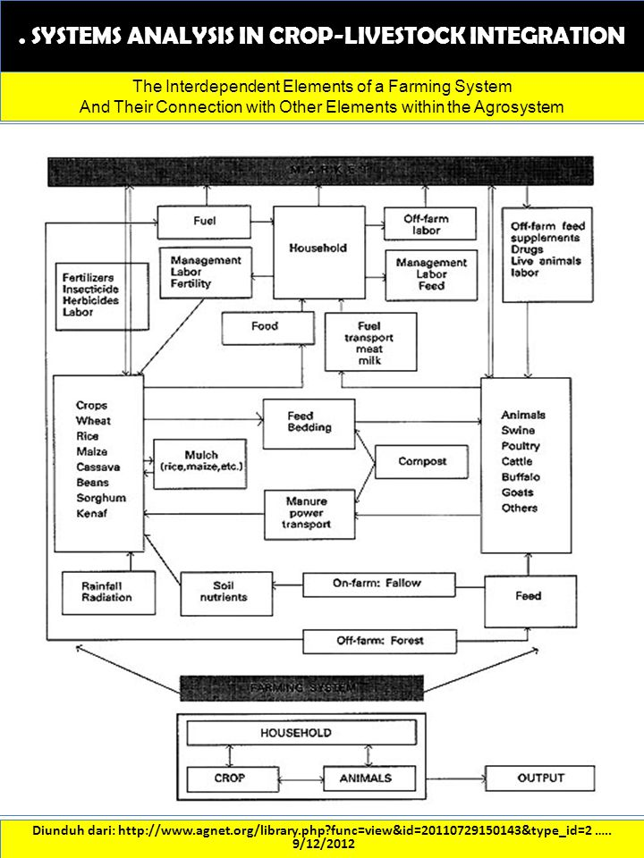 . SYSTEMS ANALYSIS IN CROP-LIVESTOCK INTEGRATION