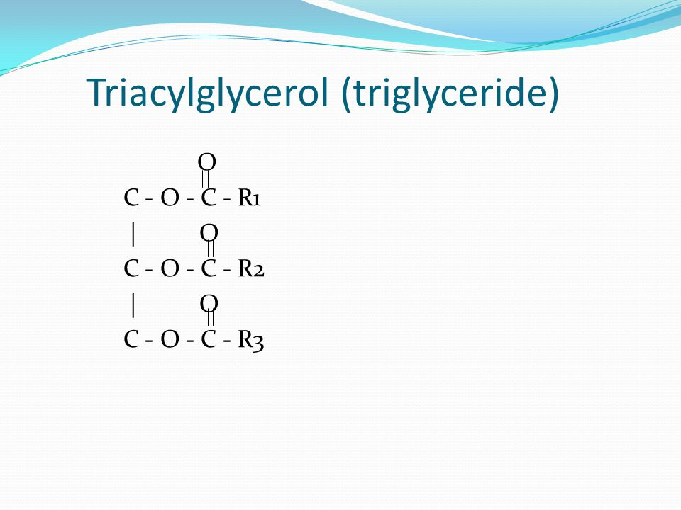Triacylglycerol (triglyceride)