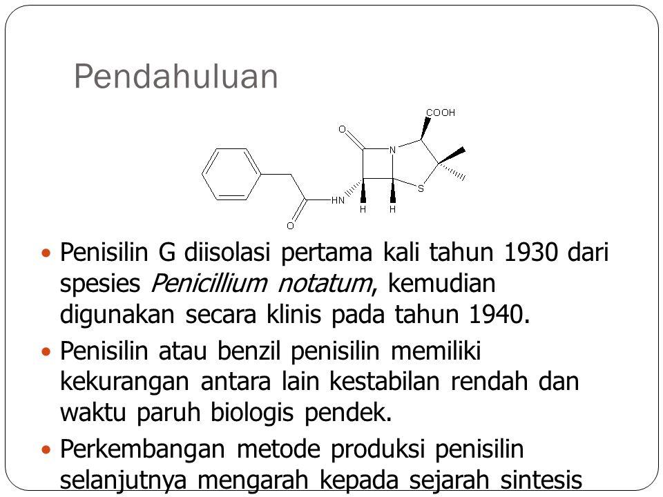 Pendahuluan Penisilin G diisolasi pertama kali tahun 1930 dari spesies Penicillium notatum, kemudian digunakan secara klinis pada tahun 1940.