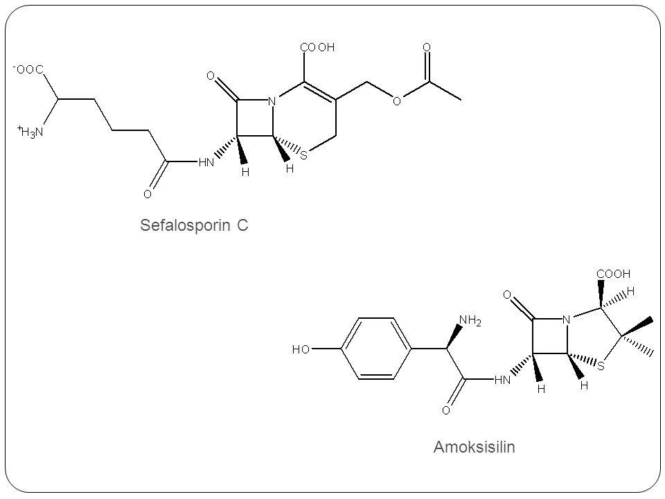 Sefalosporin C Amoksisilin