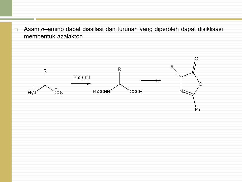 Asam α–amino dapat diasilasi dan turunan yang diperoleh dapat disiklisasi membentuk azalakton